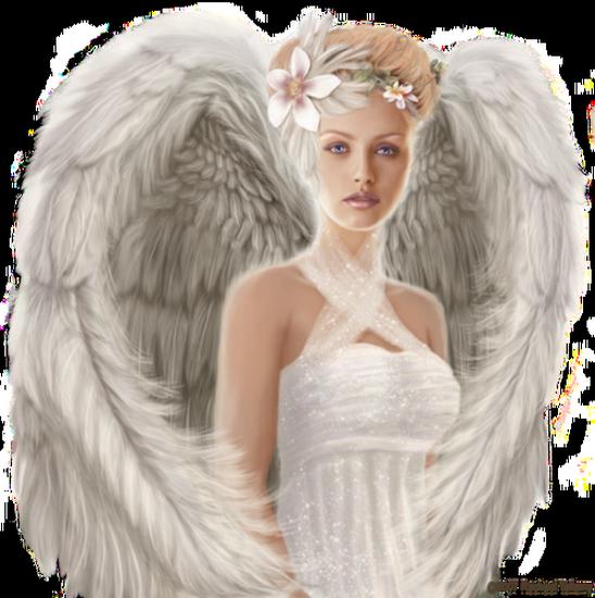 tubes_fairy_tiram_903