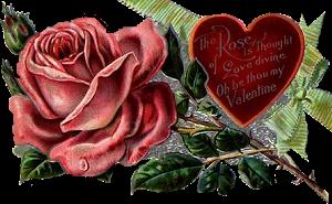 tubes_fleurs_saint_valentin_tiram_102