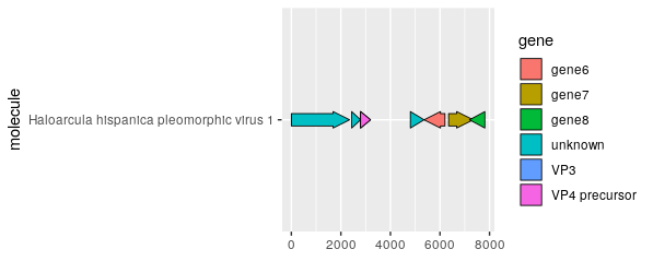 Genome Diagram in R