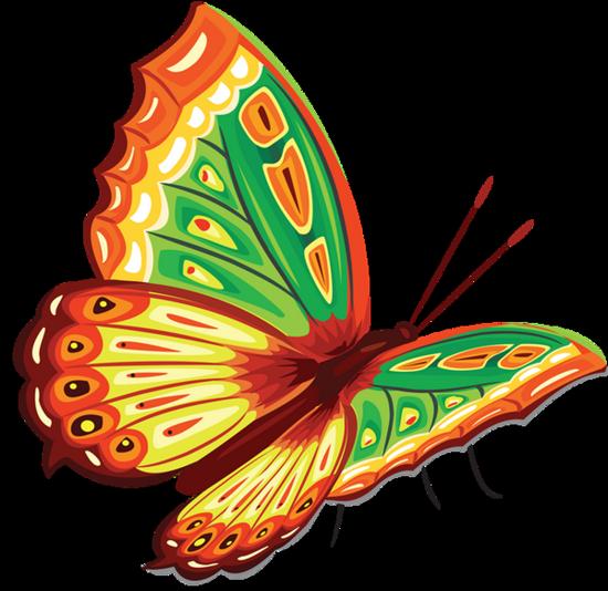 tubes_papillon_tiram_229