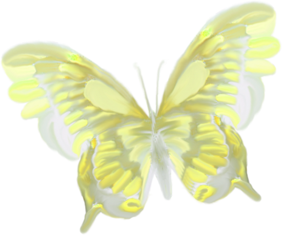 tubes_papillon_tiram_321
