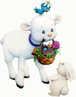 mouton_tiram_78