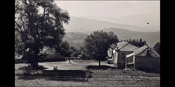 Τσαμαντά