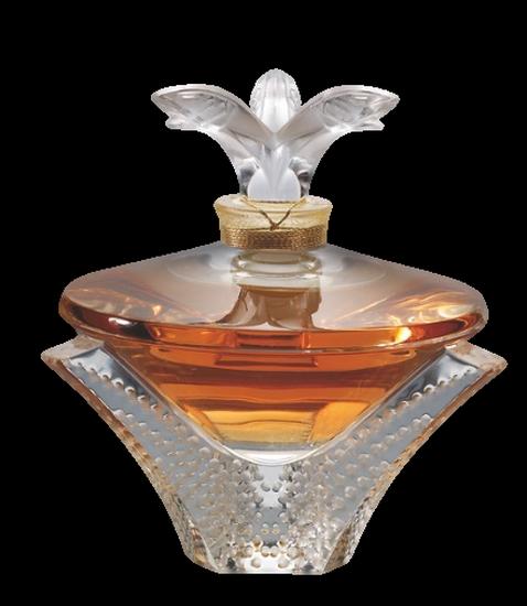 parfum_tiram_129