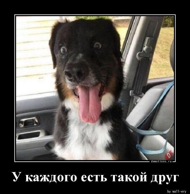 1533536413_u_kazhdogo_est_takoy_demotions_ru
