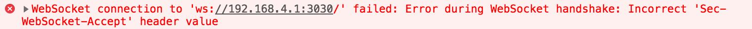 ws server connection error