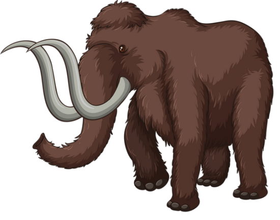 tubes_elephants_tiram_401