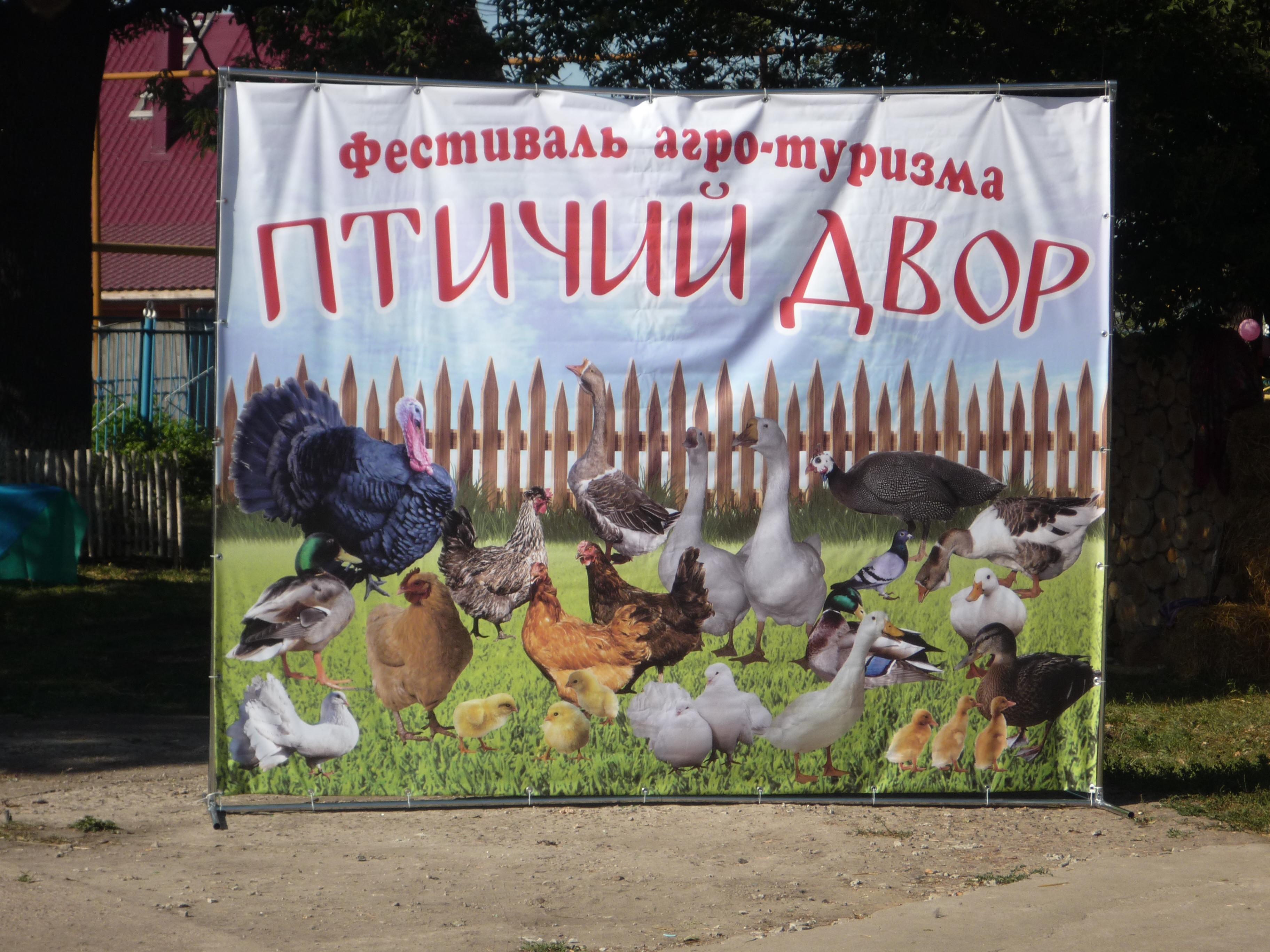 Альбом 90-летие со дня образования Токаревского района (часть 1)