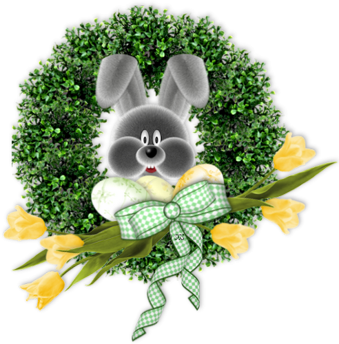 lapins_paques_tiram_395