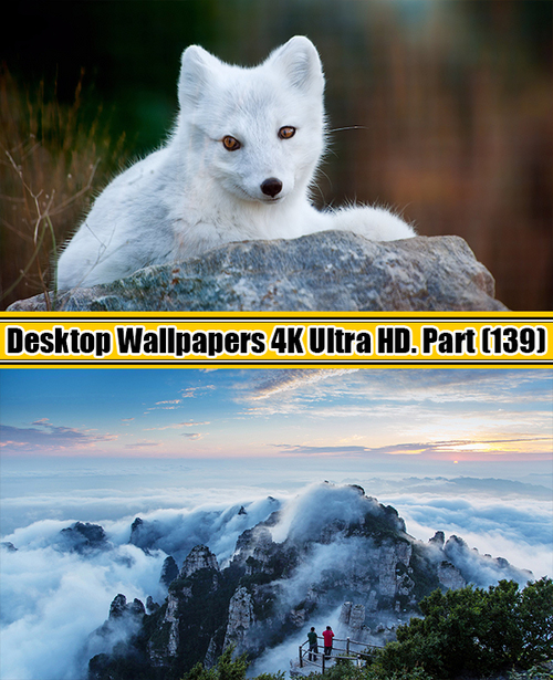 Deskop Wallpapers 4K Ultra HD. Part 139
