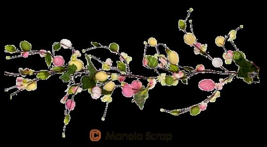 fleurs_paques_tiram_86