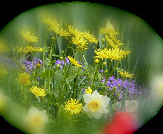 tubes_fleurs_tiram_511