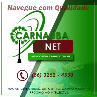 Carnauba_BI