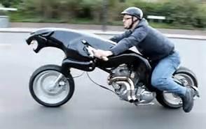 motorcycle_cougar.jpg