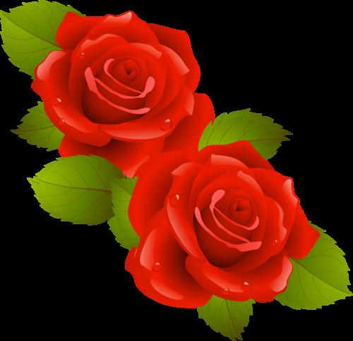 tubes_fleurs_saint_valentin_tiram_183
