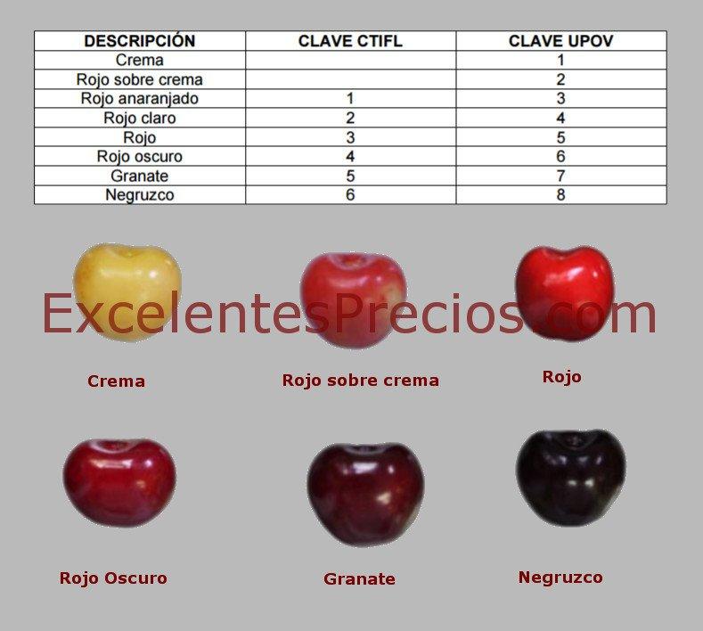 Color de la piel en variedades de cerezas