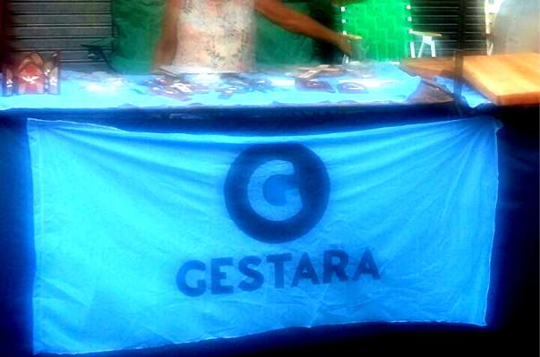 https://image.ibb.co/fWvOt7/gestara_tapa