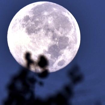 每当到了中秋夜(23.09.18)