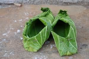 lettuce_shoes.jpg