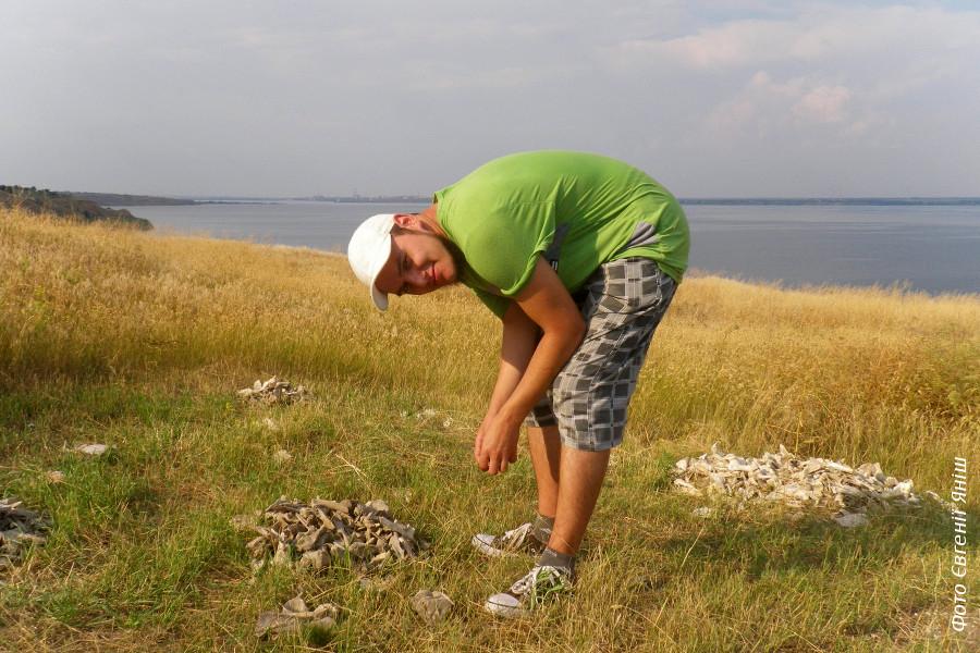 Будні археозоолога