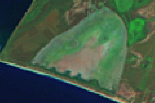 20030829