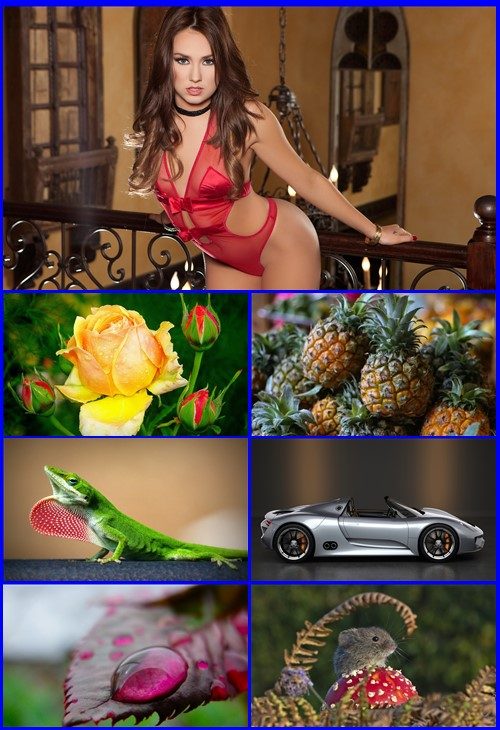 Beautiful Mixed Wallpapers Pack 783