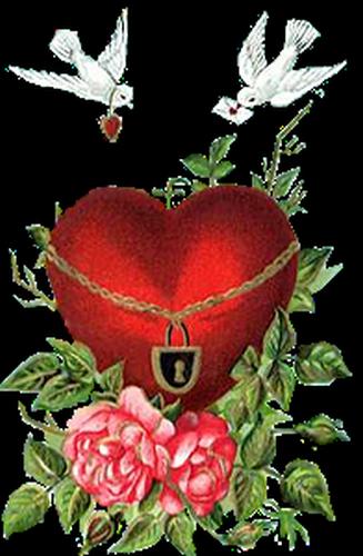 coeur_saint_valentin_tiram_186
