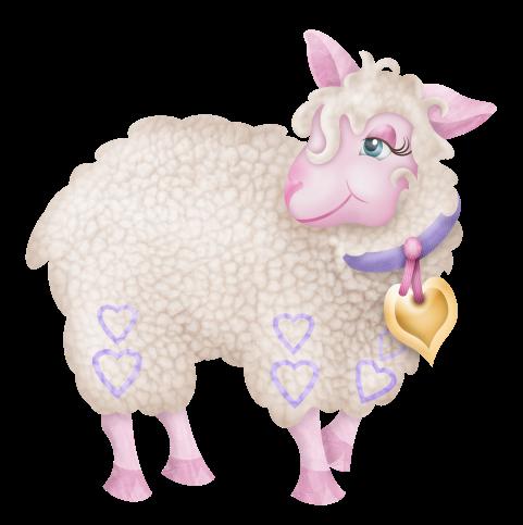 mouton_tiram_51