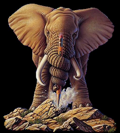 tubes_elephants_tiram_22