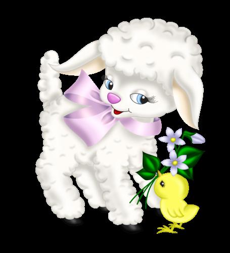 mouton_tiram_48