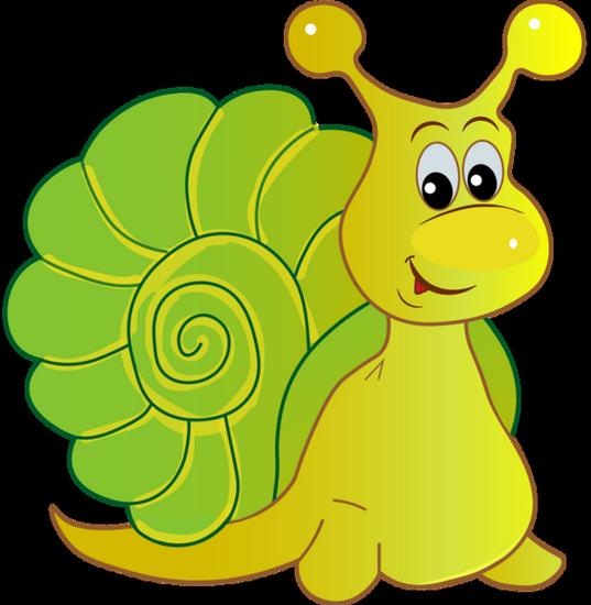 tubes_escargots_tiram_217
