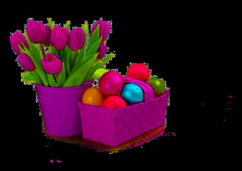 fleurs_paques_tiram_88