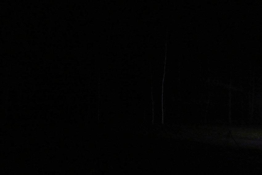 yahonty-dark-04