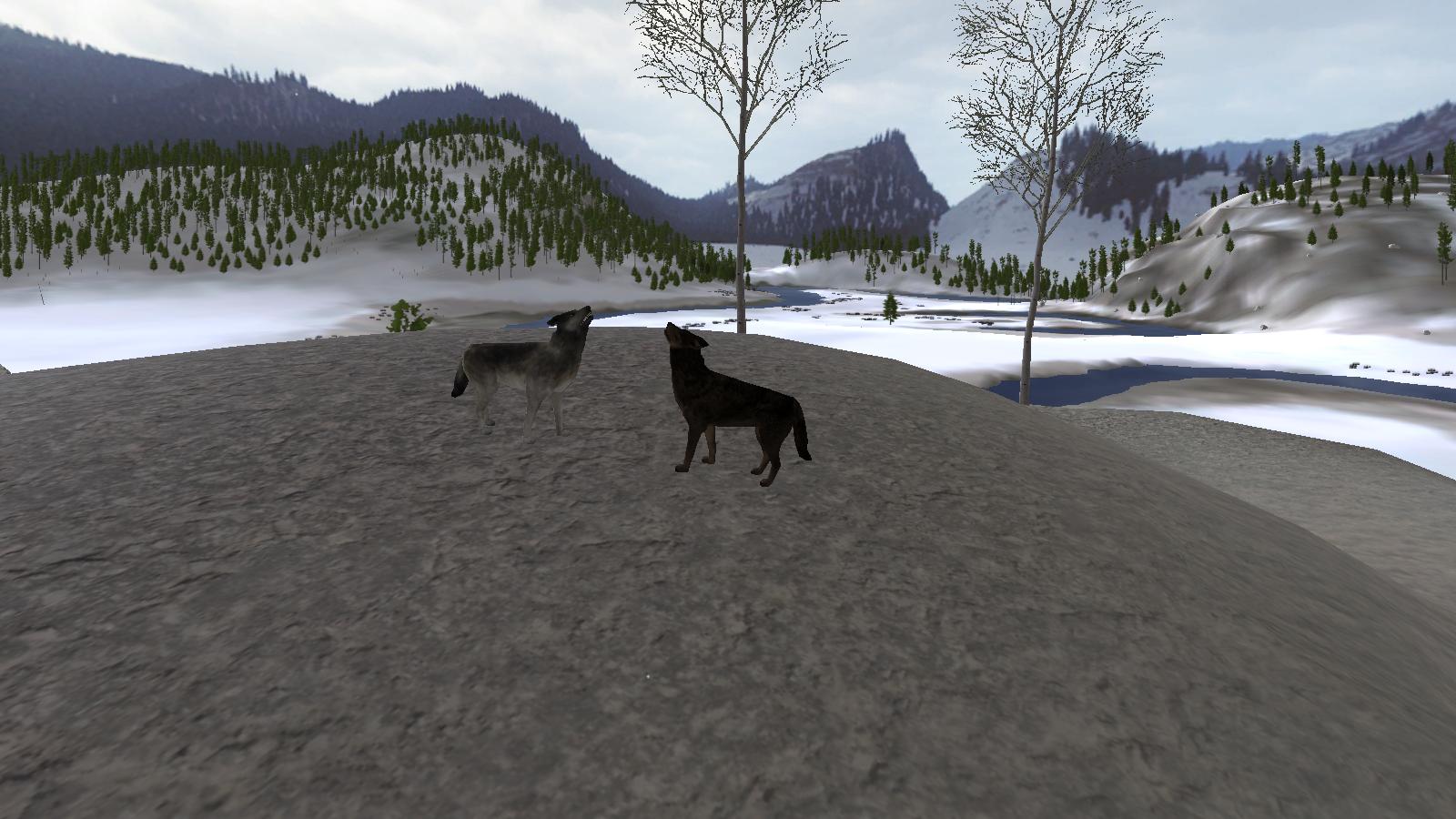 Screenshots! Wolf_Quest_Screenshot_3