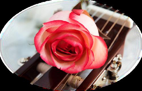 tubes_fleurs_saint_valentin_tiram_71