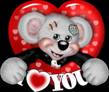 teddy_saint_valentin_tiram_258