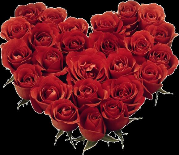 coeur_saint_valentin_tiram_177