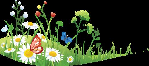 fleurs_paques_tiram_46