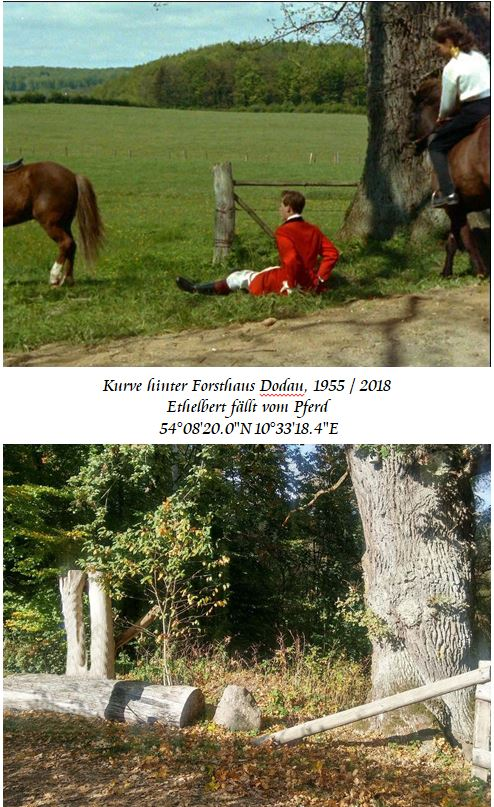 Ethelbert-f-llt-vom-Pferd