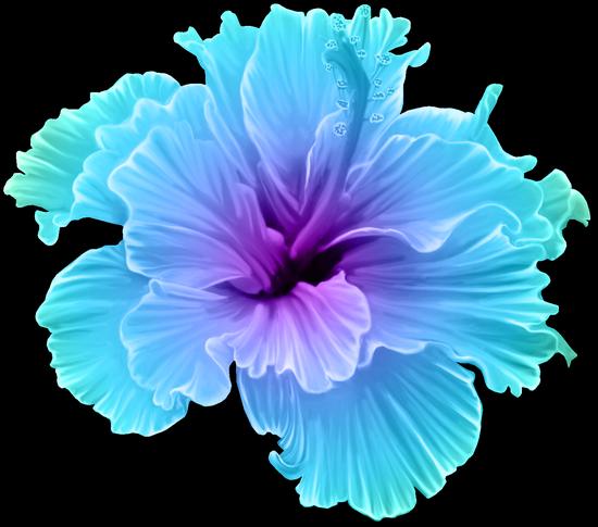 tubes_fleurs_tiram_518