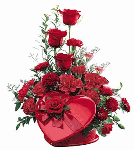 tubes_fleurs_saint_valentin_tiram_42