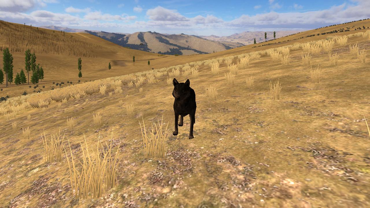 Screenshots! Wolf_Quest_Screenshot_1