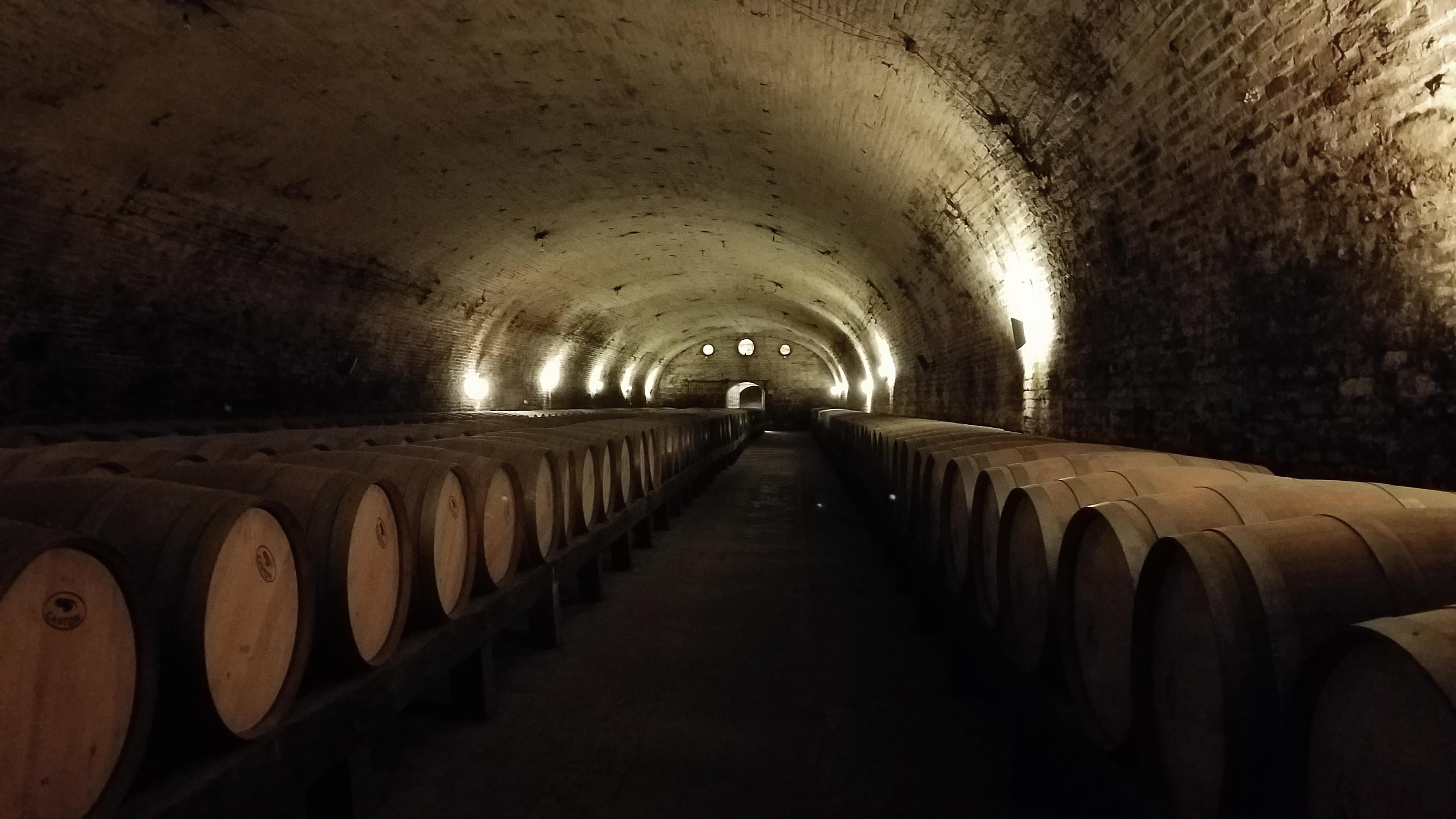winechile_4