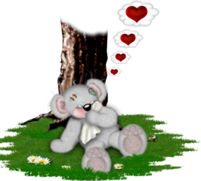 teddy_saint_valentin_tiram_230