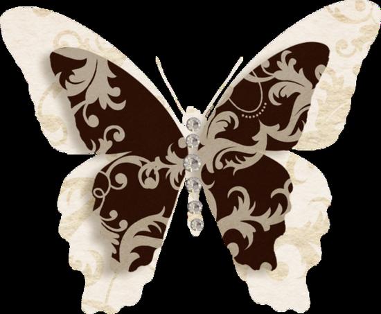 tubes_papillon_tiram_143