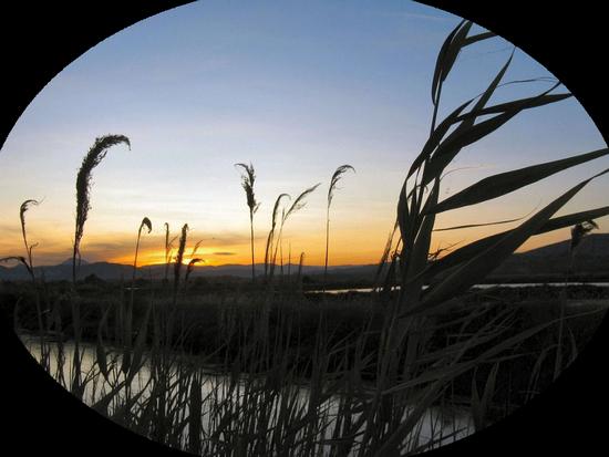 paysage_tiram_814