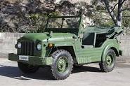 Austin Champ 190