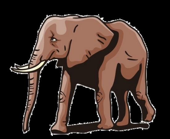 tubes_elephants_tiram_211