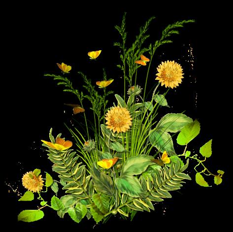 fleurs_paques_tiram_299
