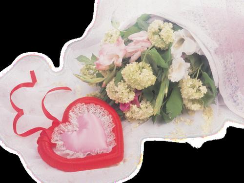 tubes_fleurs_saint_valentin_tiram_39